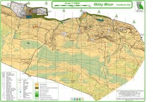Ilkley Moor Winter